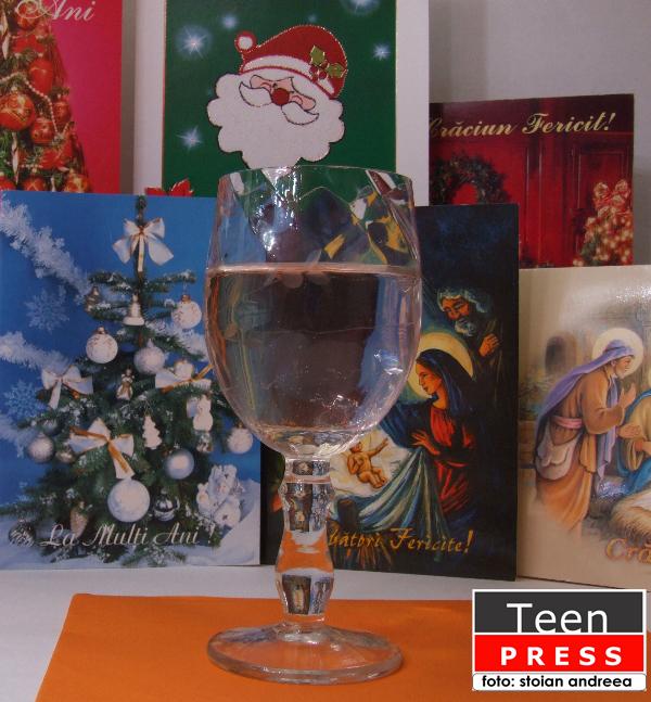Don't_let_it_snow-Stoian Andreea-colaborator_foto_teen_press