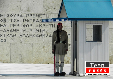 Garda decorativa la Parlament - raluca_anculete_tp