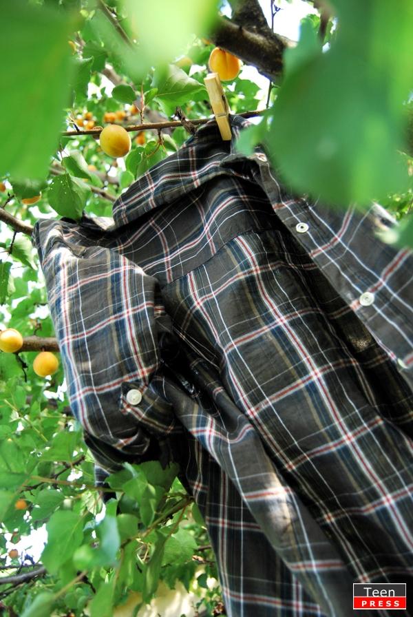 Pledoarie pentru camasile in carouri